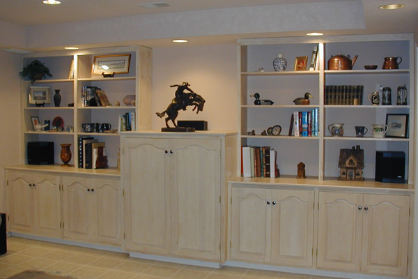 Book case and entertainment center